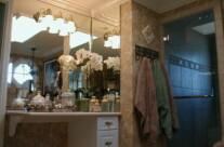 Custom Mirrors and Shower Door